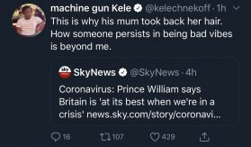 Royal Reporters' Idiotic Opinions 10